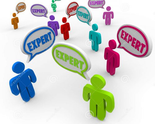expert-people-team-workers-diverse-skills-experience-expertise-38498901